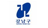 Gangnam CI